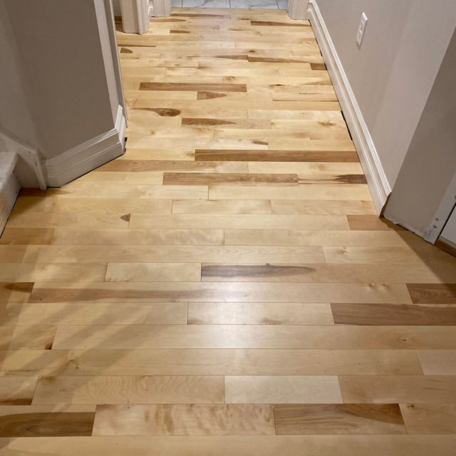 buffalos-best-hardwood-flooring-11